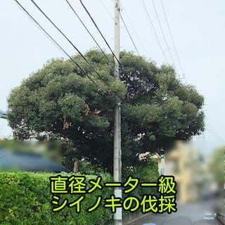 渡辺造園(東京)