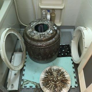 洗濯機クリーニング専門店