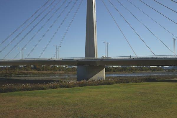 三角構図で撮った斜張橋。