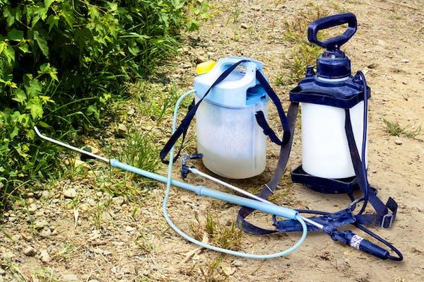 雨の日に除草剤を使用する方法