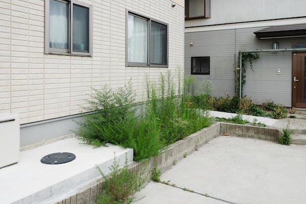 雑草の生えた駐車場