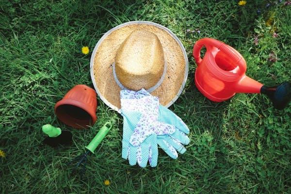 芝生の上のガーデニング道具