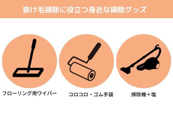 抜け毛掃除に役立つ身近な掃除グッズの図解