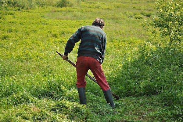 草を刈る男性