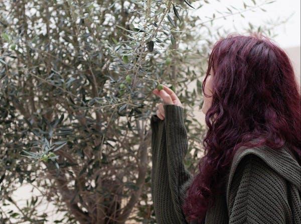 オリーブの実をつまむ女性