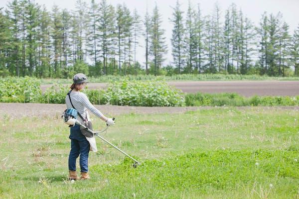 草刈り作業をする女性