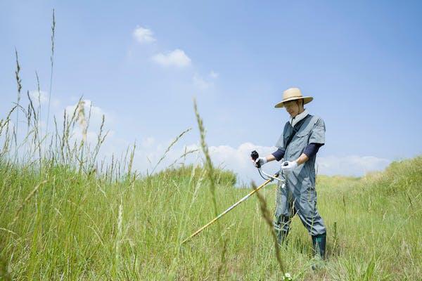 草刈りする男性