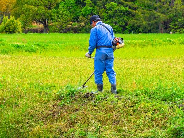 草刈りをする人
