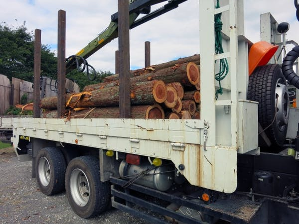 トラックの荷台に積まれた伐採された木