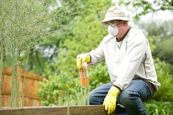 除草剤を散布する男性