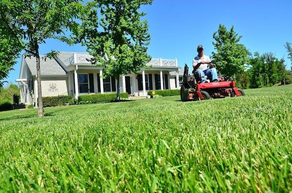 庭で草刈り機を操作する男性