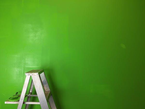 塗り終わった壁