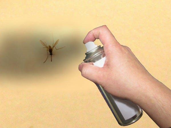 殺虫剤と羽虫