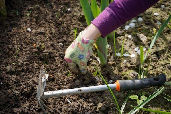 自分で庭を整地する