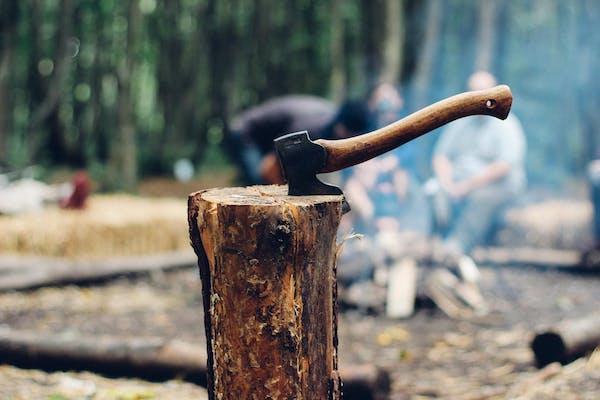 枝に刺さる斧