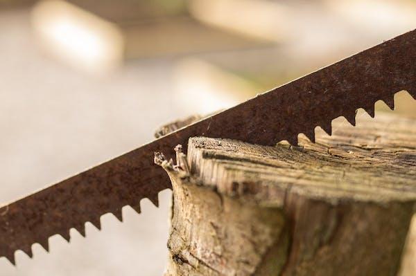 木を切るノコギリ