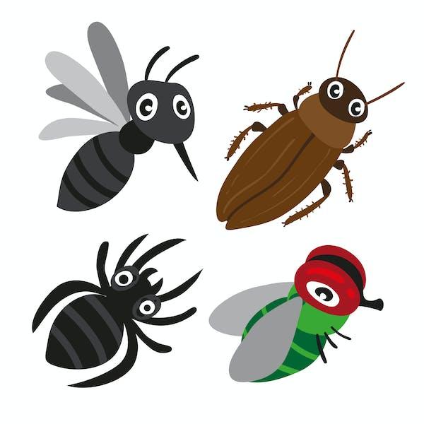 クモの捕食対象、ゴキブリ、ハエ、蚊など