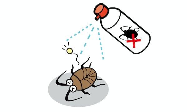 殺虫スプレーで死ぬゴキブリのイラスト